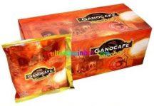 Ganocafe-Mocha-15-tasak-ganoderma-kavekulonlegesseg-ganoexcel