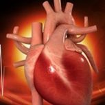 Szív és érrendszeri problémák