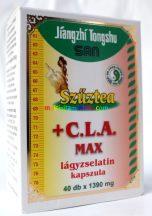 Szuztea-C-L-A-MAX-40-db-kapszula-testmozgassal-kombinalt-fogyokurahoz-dr-chen