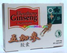 Eleuthero-Ginseng-30db-kapszula-stressz-eletero-libido-dr-chen