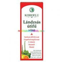 Kohoflu-Landzsas-utifu-szirup-150-ml-bibor-kasvirag-echinacea-grapefruitmag-dr-chen