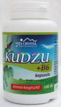 Kudzu-B6-kapszula-100-db-izoflavonidokkal-Flavin7-vita-crystal